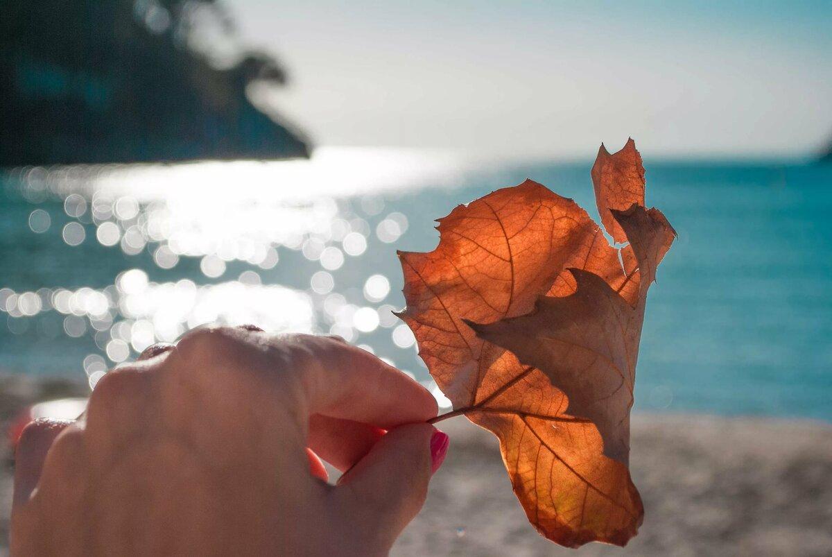 острых открытки осень и море дополнением вечернему