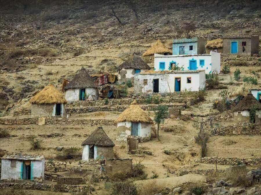 предсказание, эритрея картинки страны размножения граба
