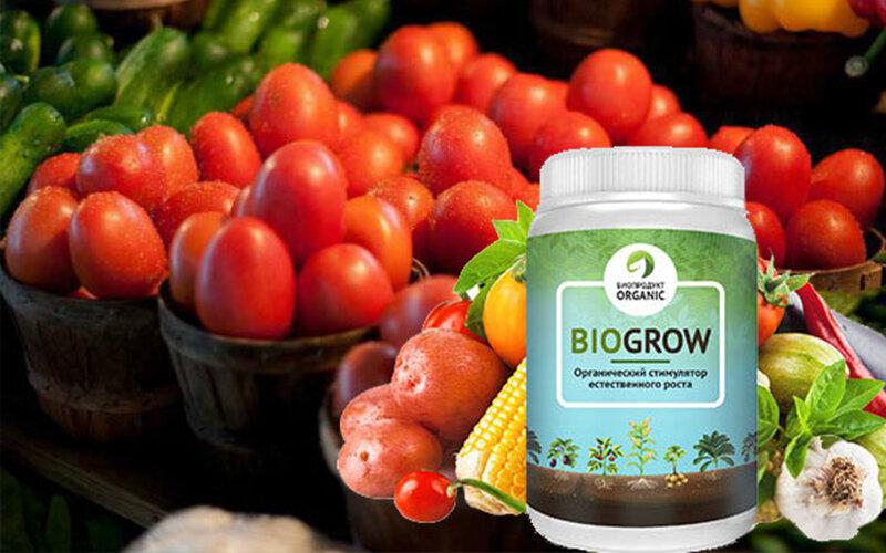 BioGrow Plus – биоактиватор роста растений и рассады в Ипатове