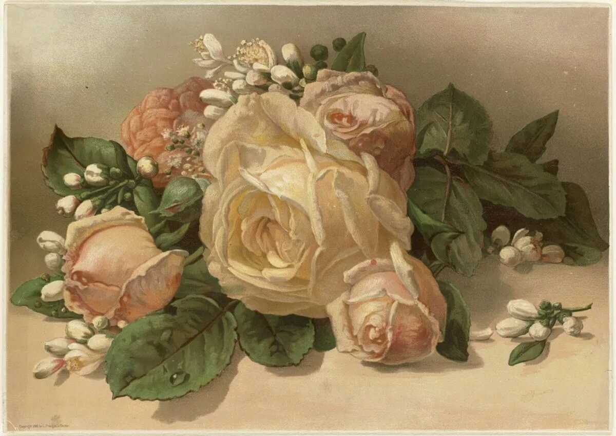 Картинки розы красивые декупаж
