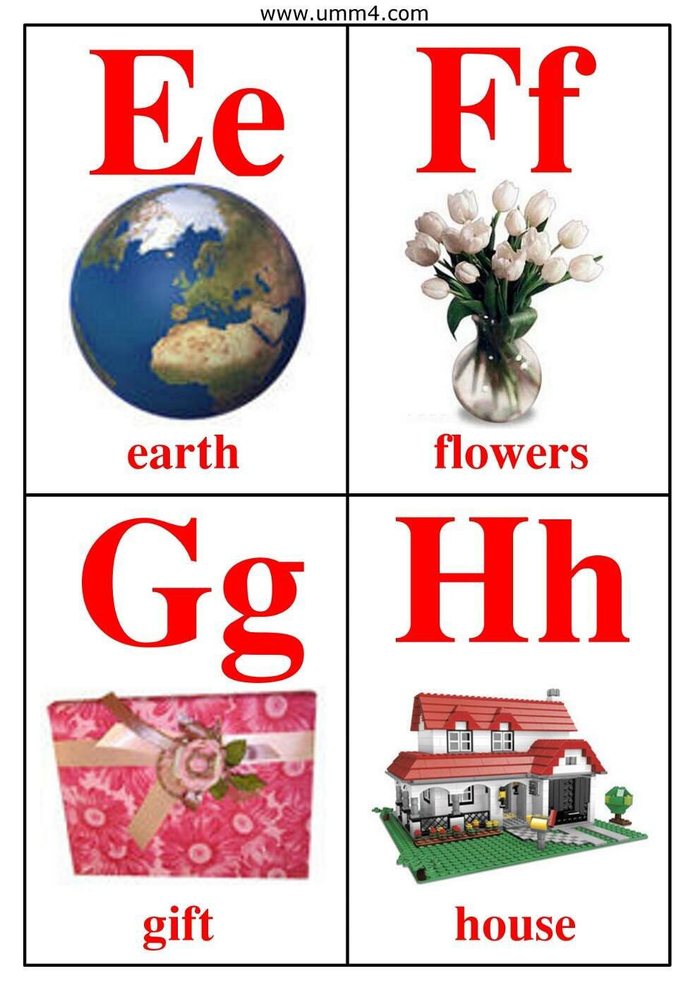 Английский алфавит в картинках на карточках