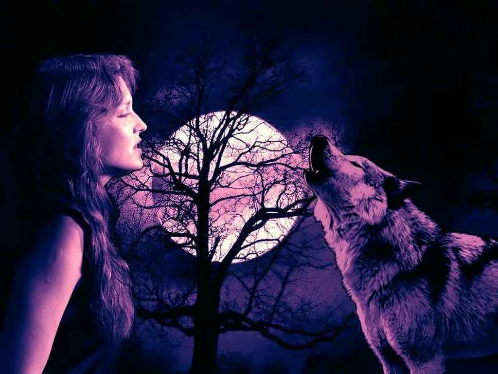 Картинки одинокой женщины волчицы, для открытки