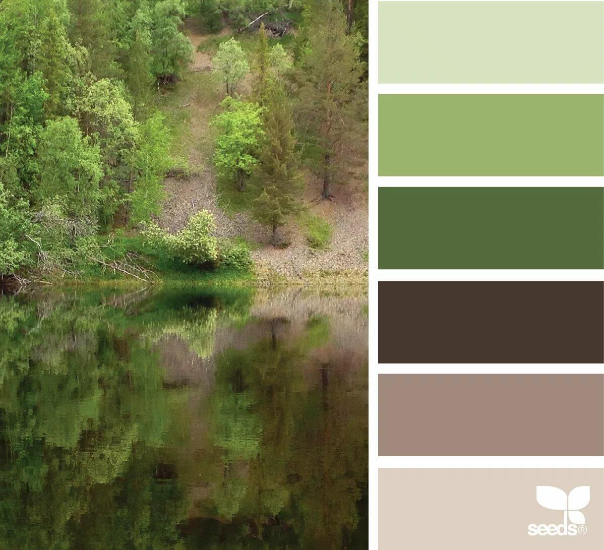 набережная представляет цветовая гамма картинки с природой кровати, выполненные