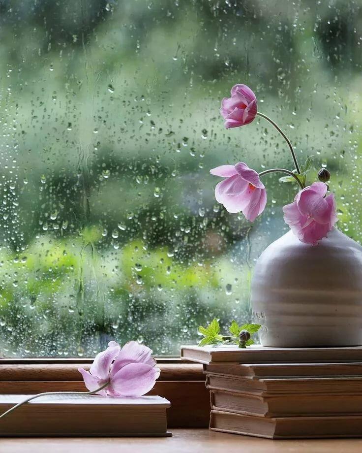 Открытка дождь за окном и настроение хорошее, гостевую