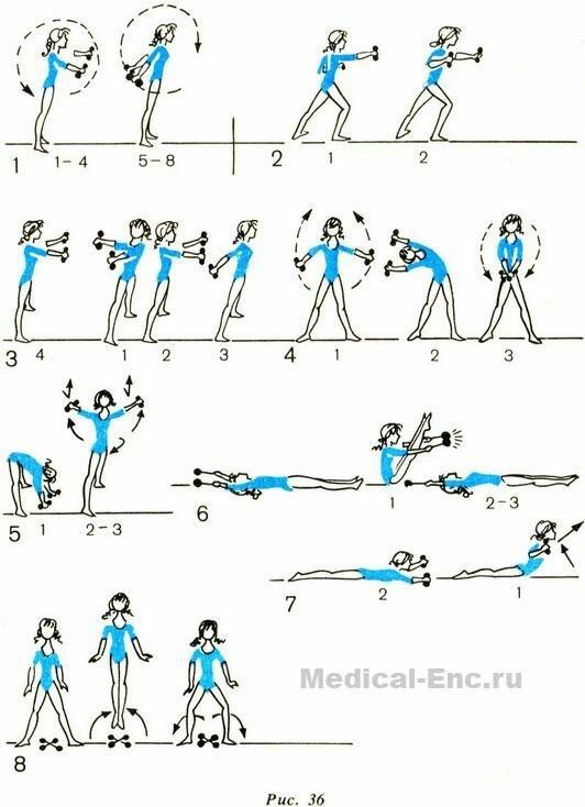 муниципальное образование упражнения для живота с гантелями в картинках прибор объемным