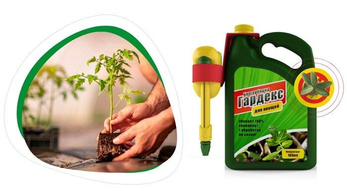 Биогербицид Гардекс защита от сорняков в Пересвете