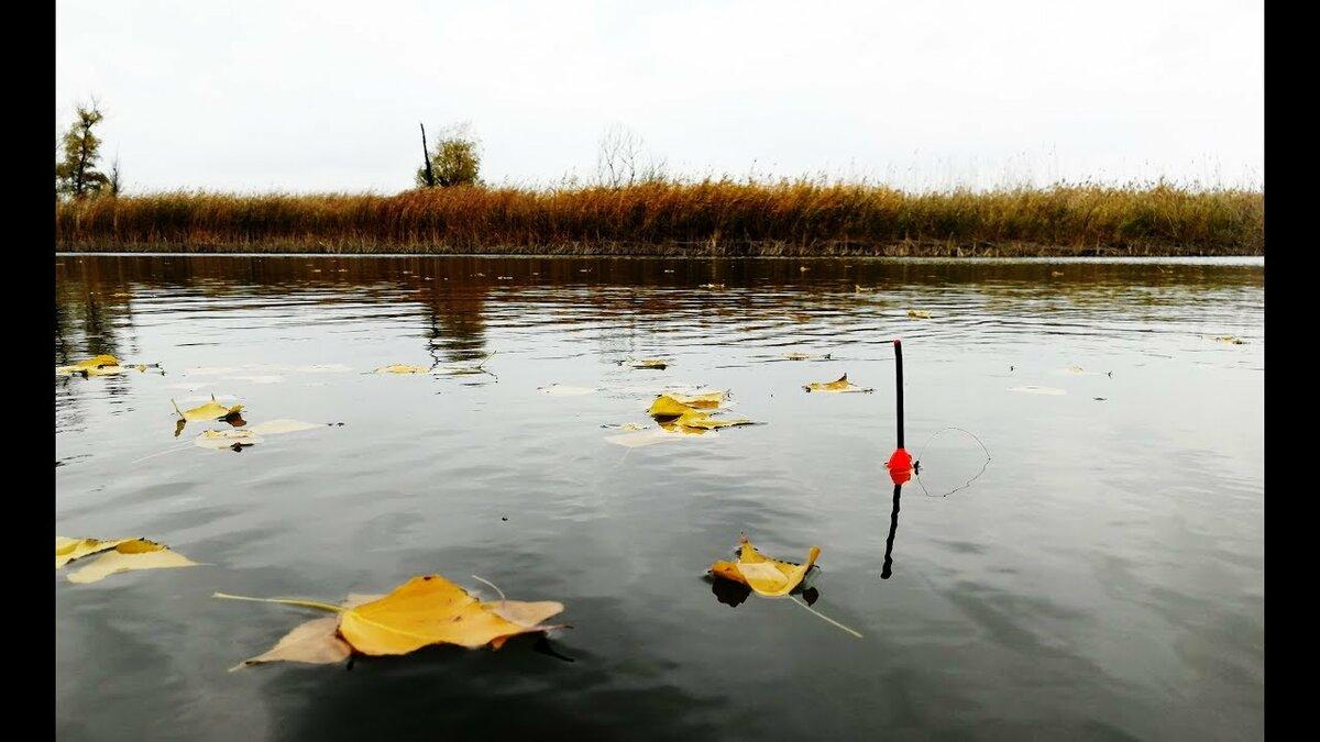 Ноябрьская рыбалка - на рыбалке