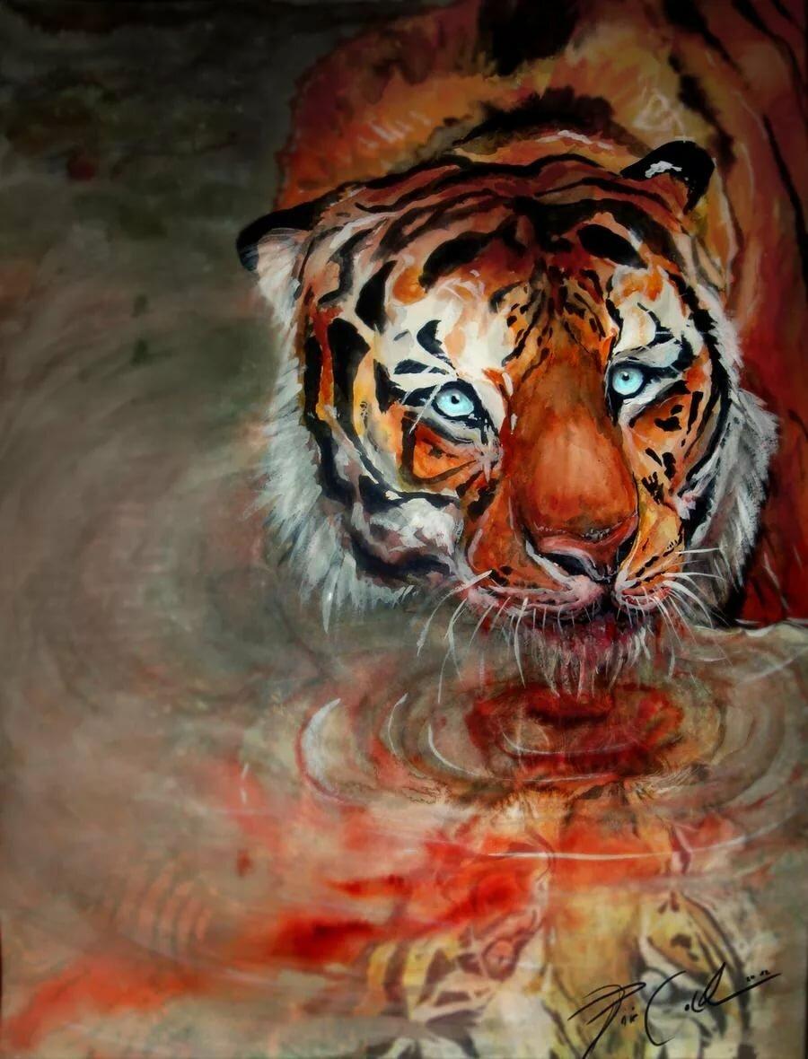картинки кровавый тигр особенностью японской кухни