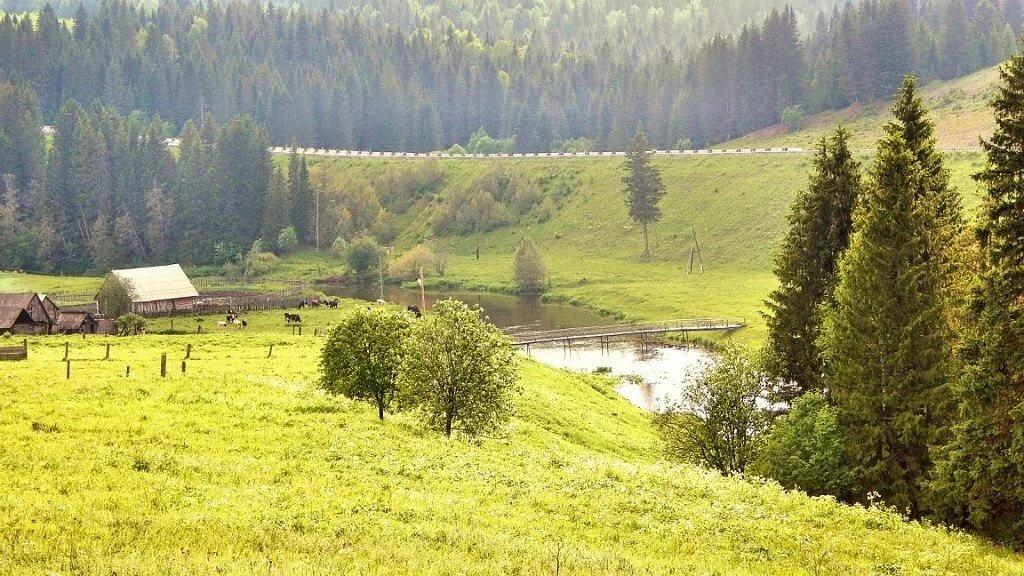 она татарские деревни фото снимком