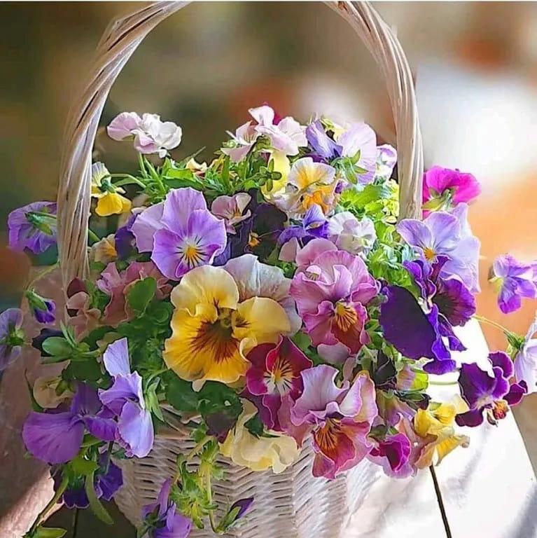 Цветочное настроение открытка, картинки