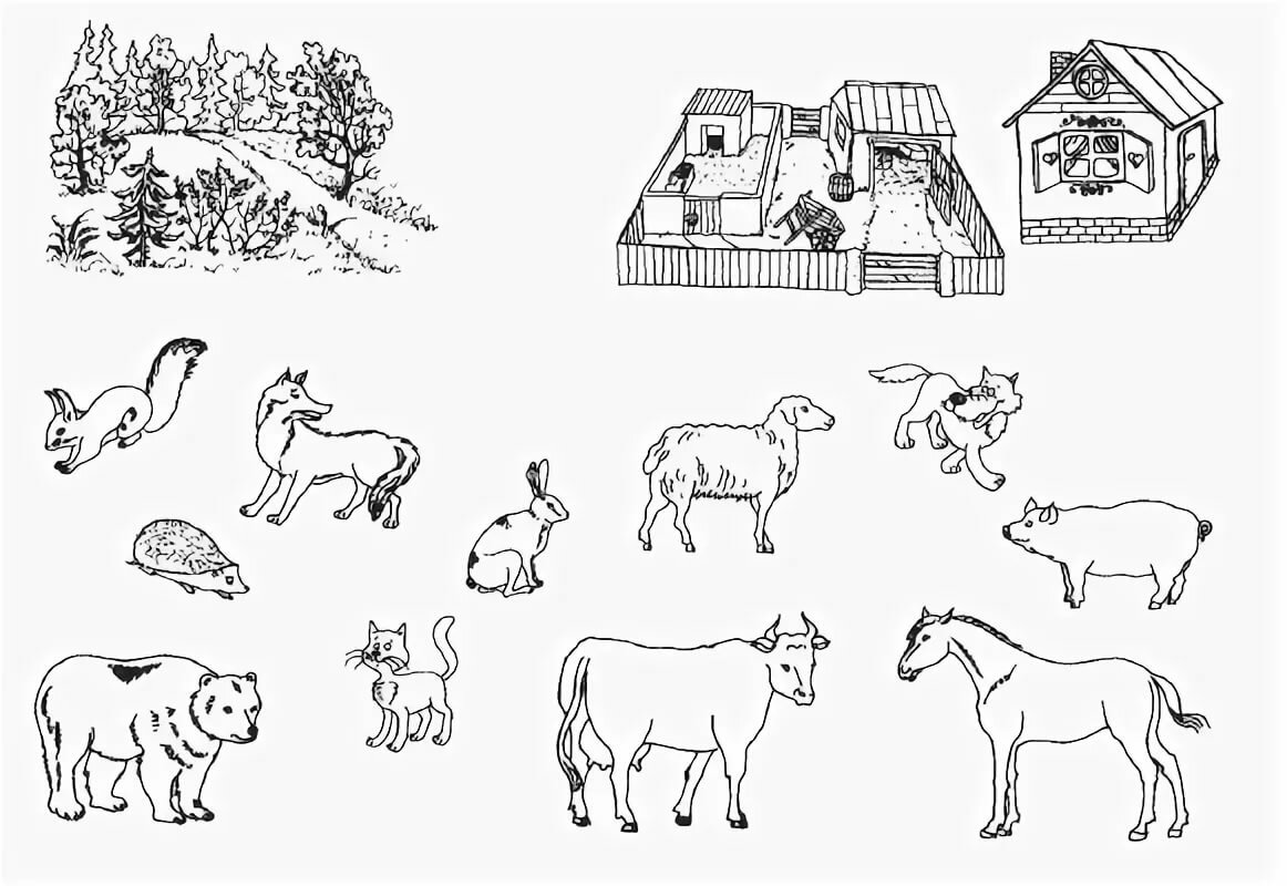 Домашнее задание на тему домашние животные для старшей группы