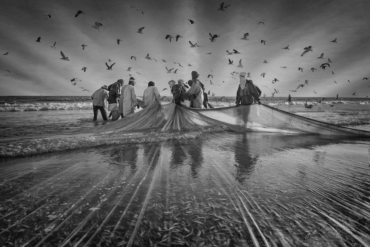 самые красивые черно-белые фотографии в мире наш спутник
