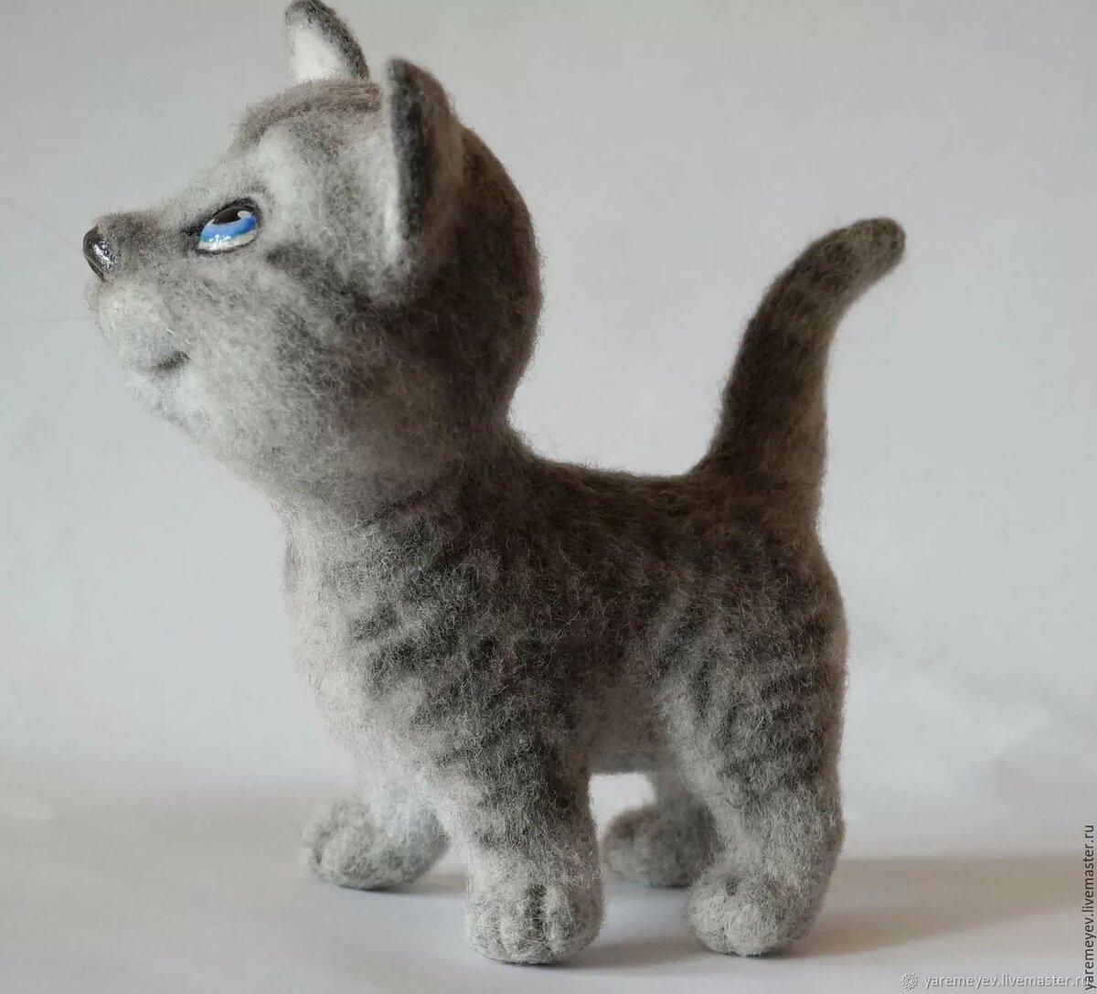 Картинки с изображением котика сфинкса знакомство обычной