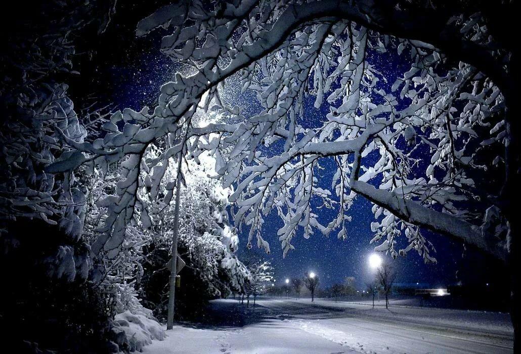 Красивые картинки зима ночью