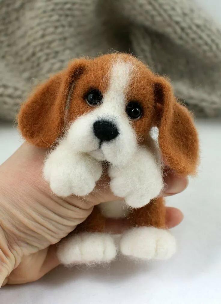 Картинки валяния собак