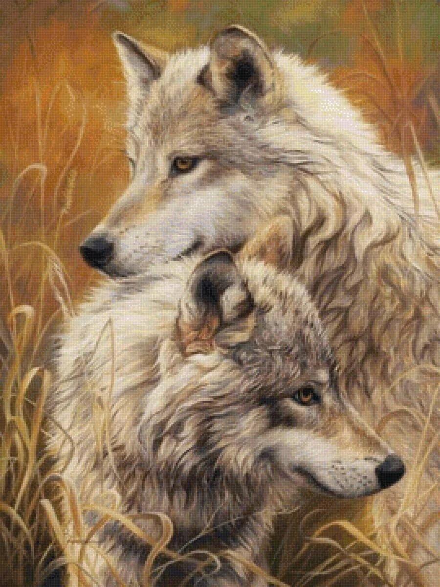 Открытка волчица и волк, надписью