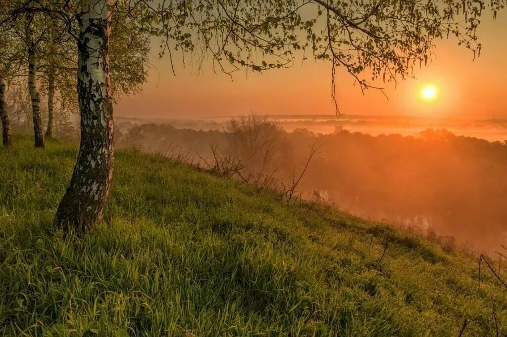 Картинки утро природа рассвет, пятницу добрым