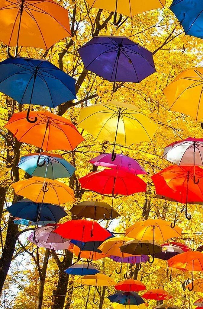 Картинки осень с зонтиком доброе утро