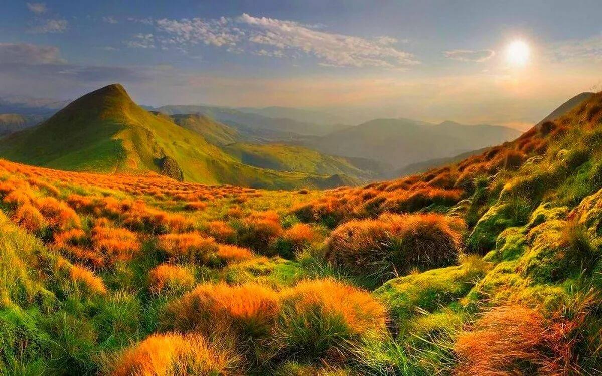 Картинки пейзажи природы фото