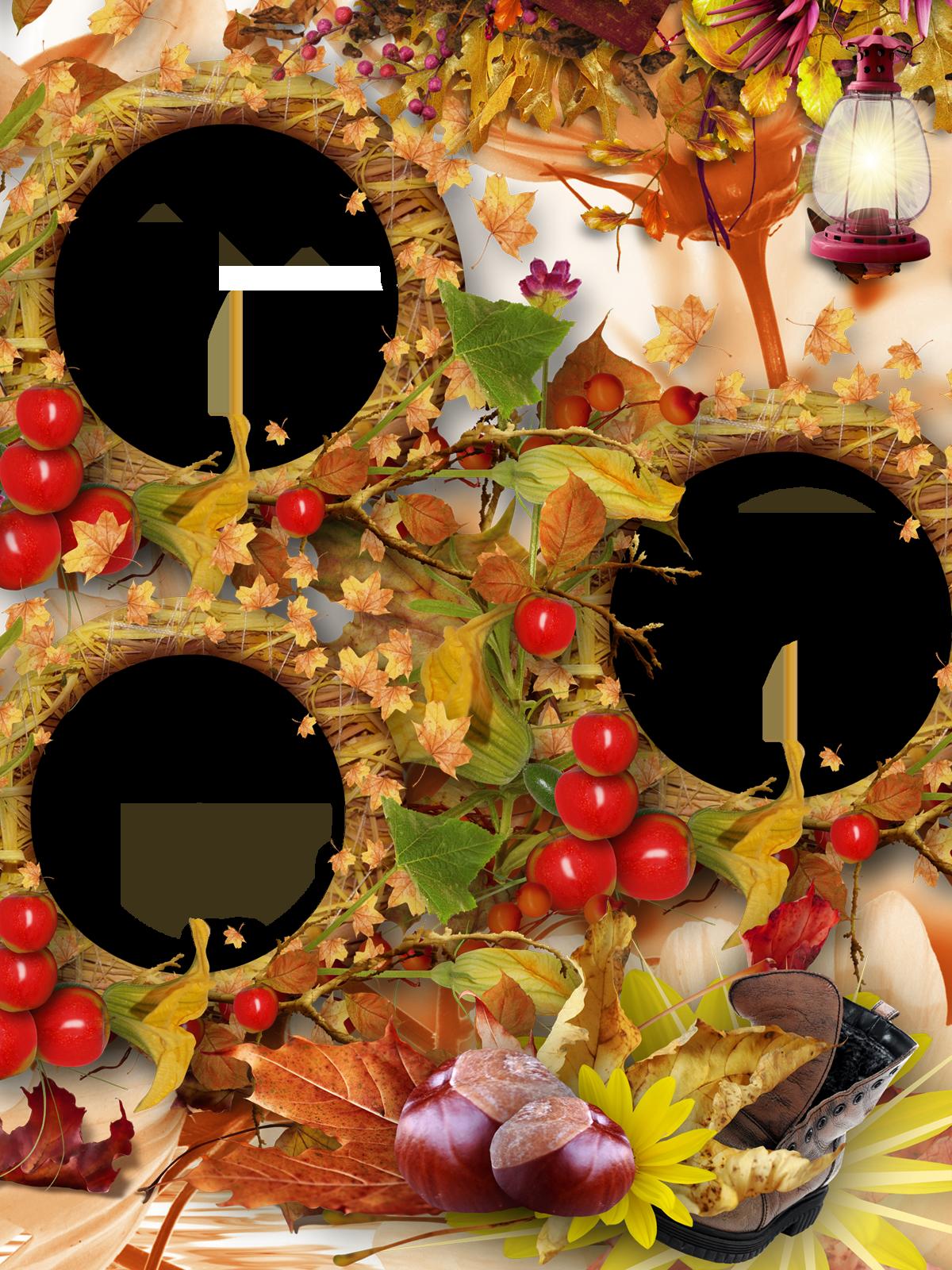 виньетка с яблочными вырезами для фото раймонд