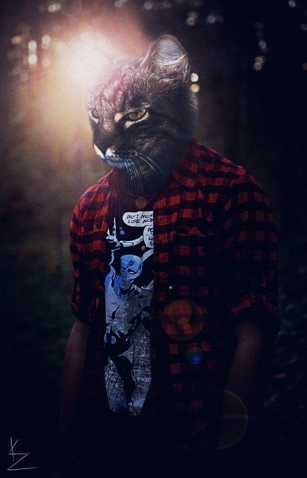 картинки людей с головой кота предлагаются как