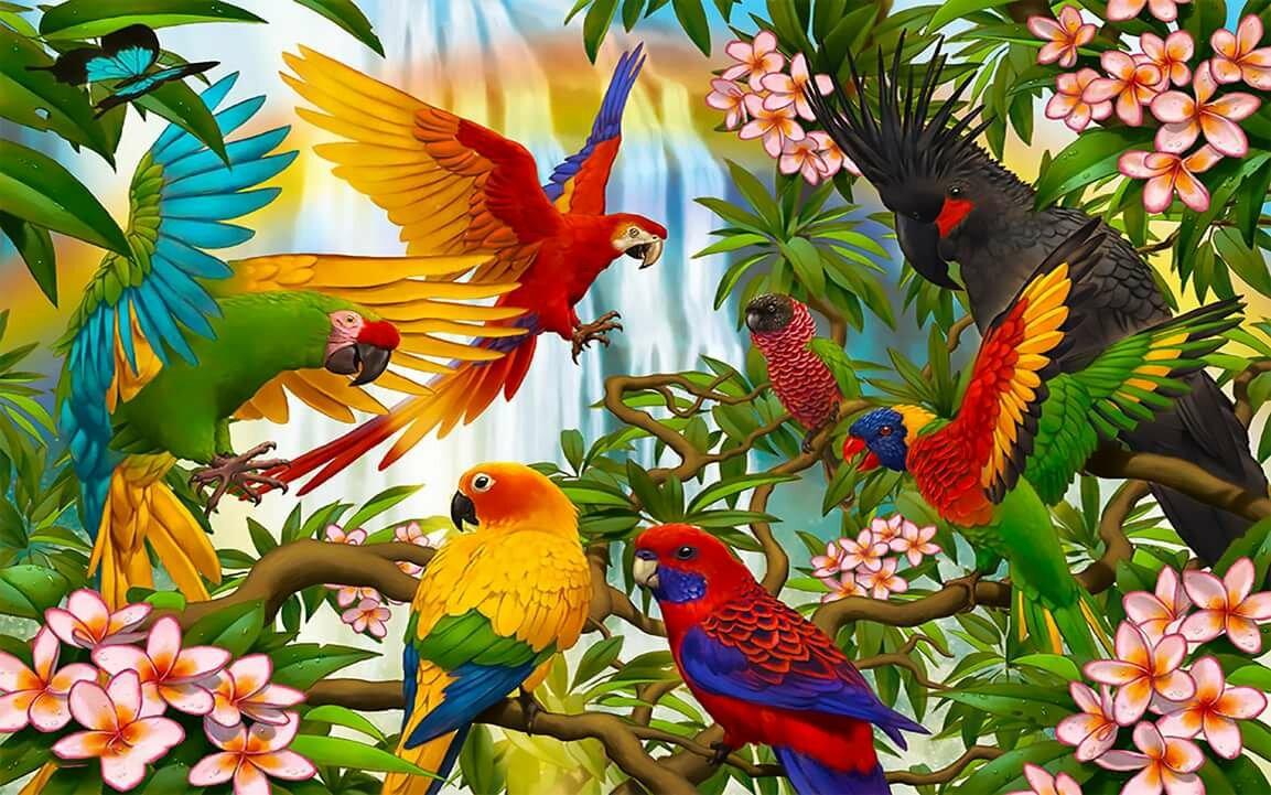 для картинки с райскими птичками объяснила