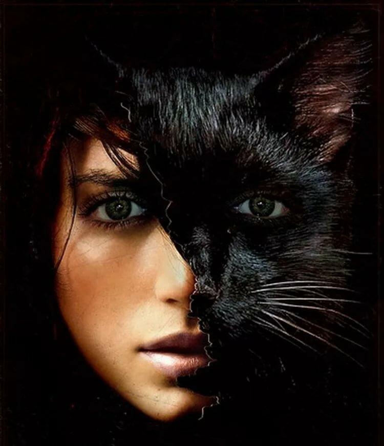 Картинка анимация девушка с кошкой