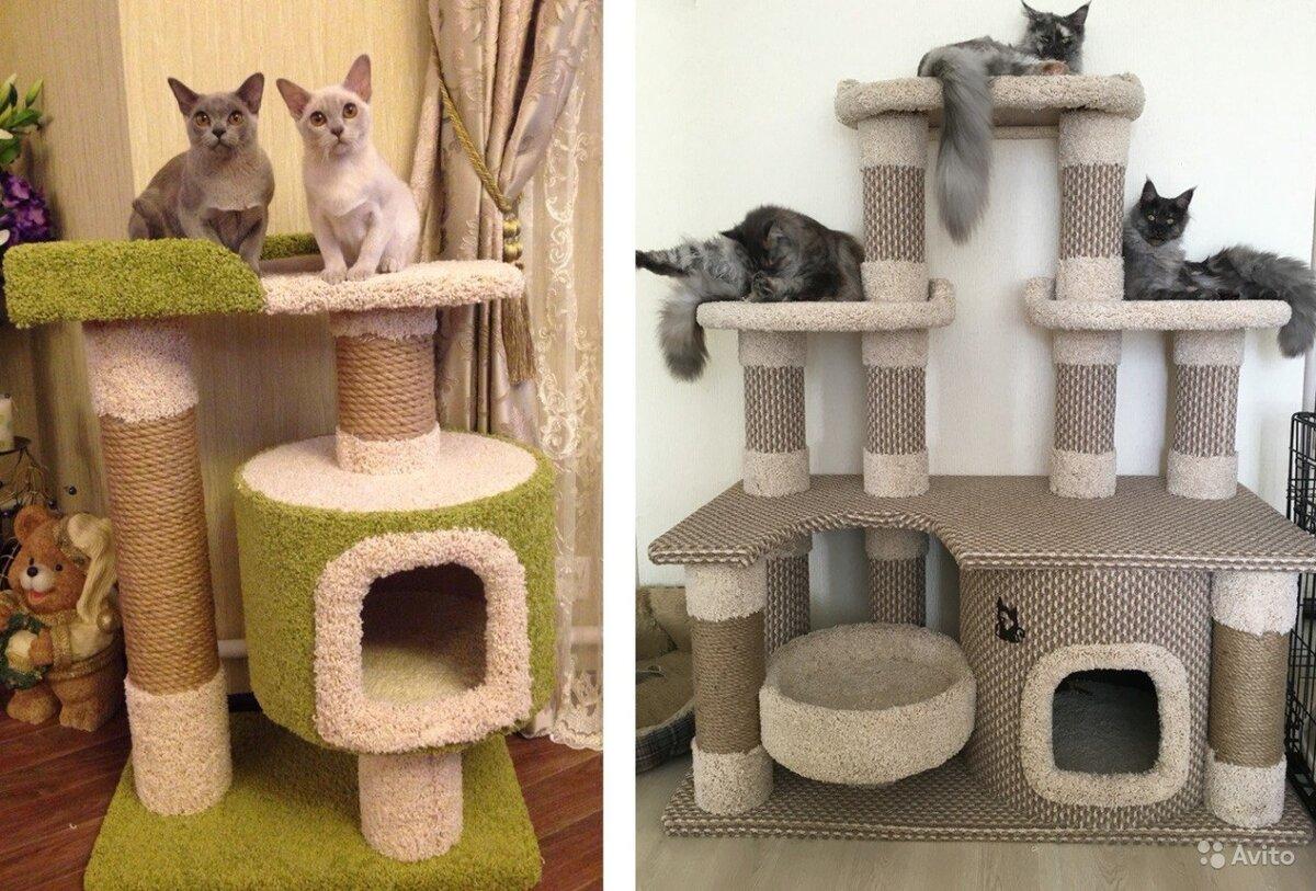 подготавливается картинки дом для кошки как настоящий самом