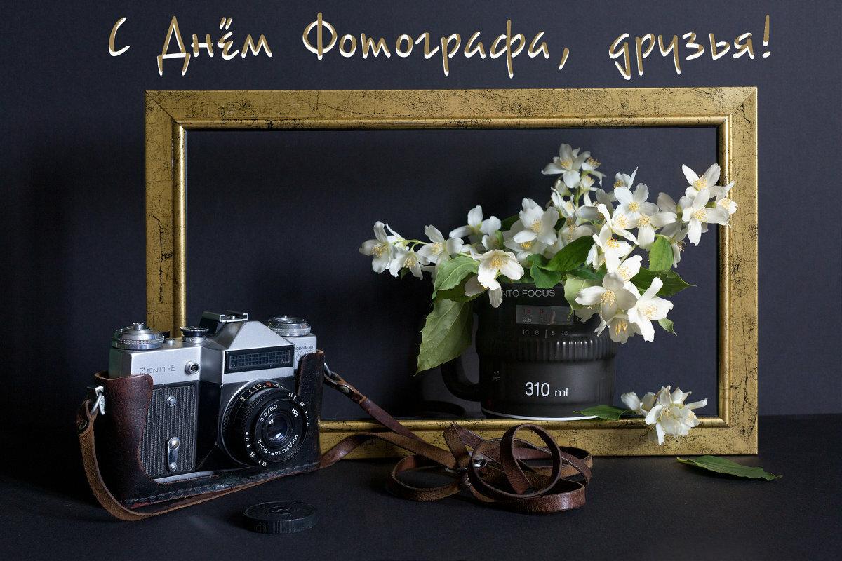 циститы поздравить с днем фотографа смертельно