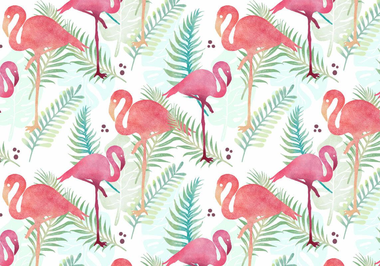 Фламинго картинки фон