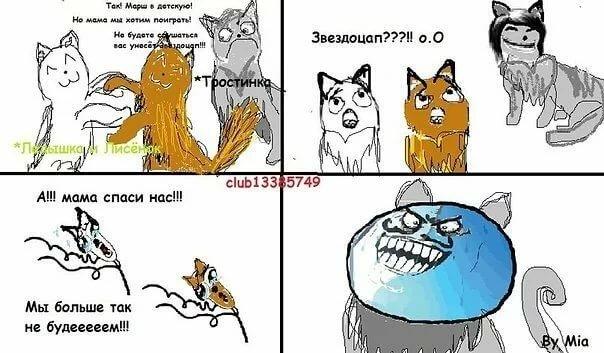 Открытки поступлением, коты воители смешные картинки с надписями до слез