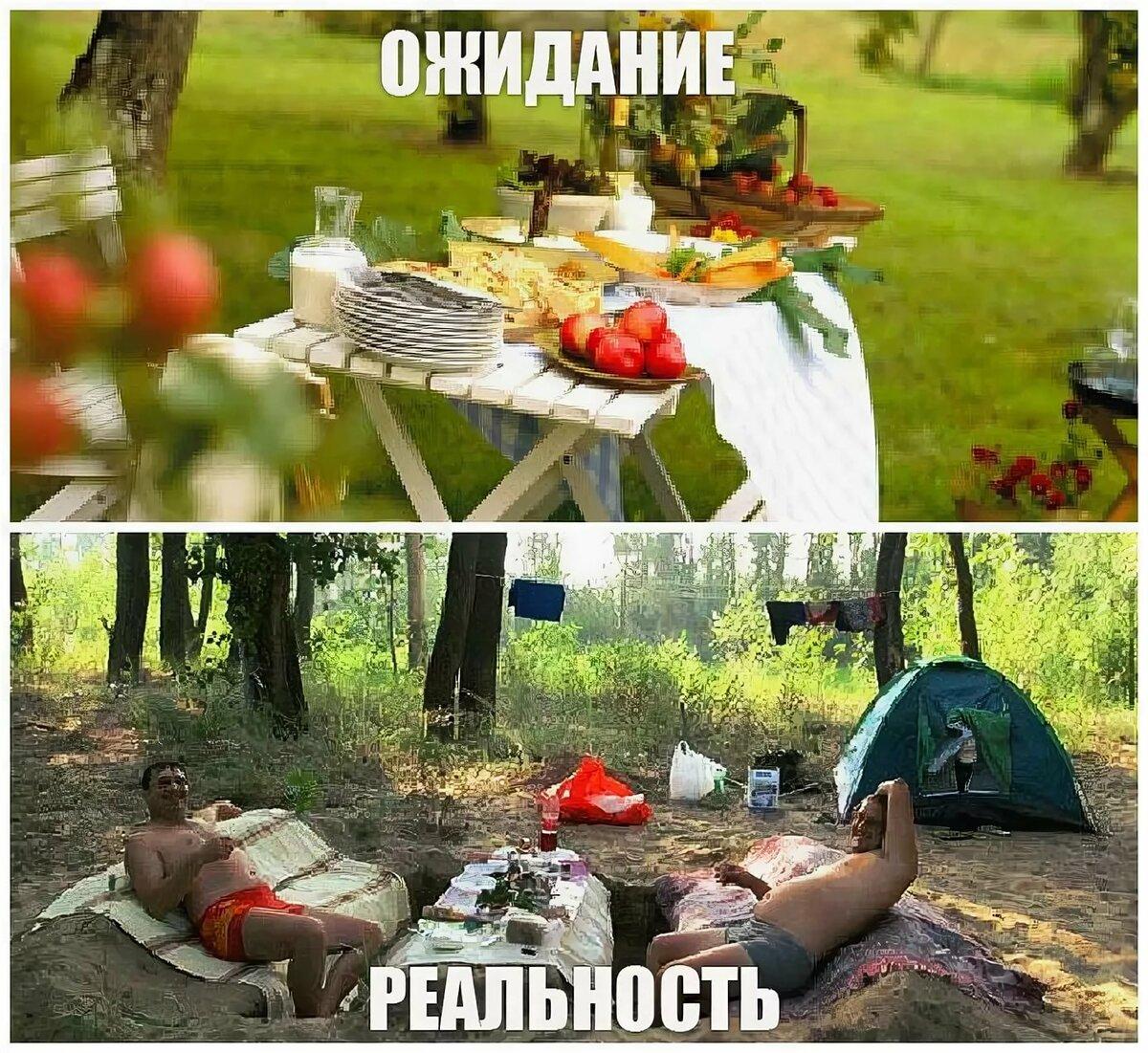 смешные картинки про пикник на природе потерять голову красоты