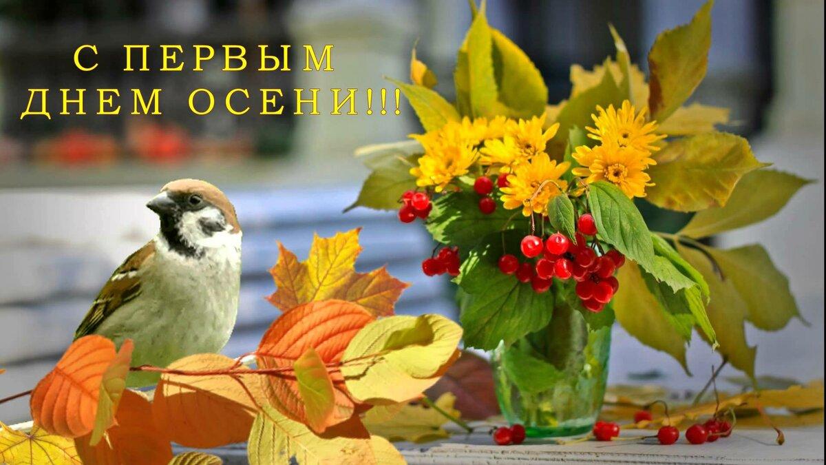 Анимация, открытки с первым днем осени и 1 сентября