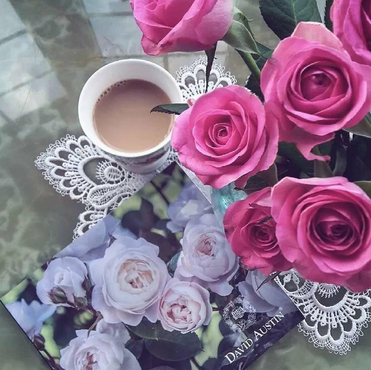 картинки большие цветы с добрым утром различные виды маникюра