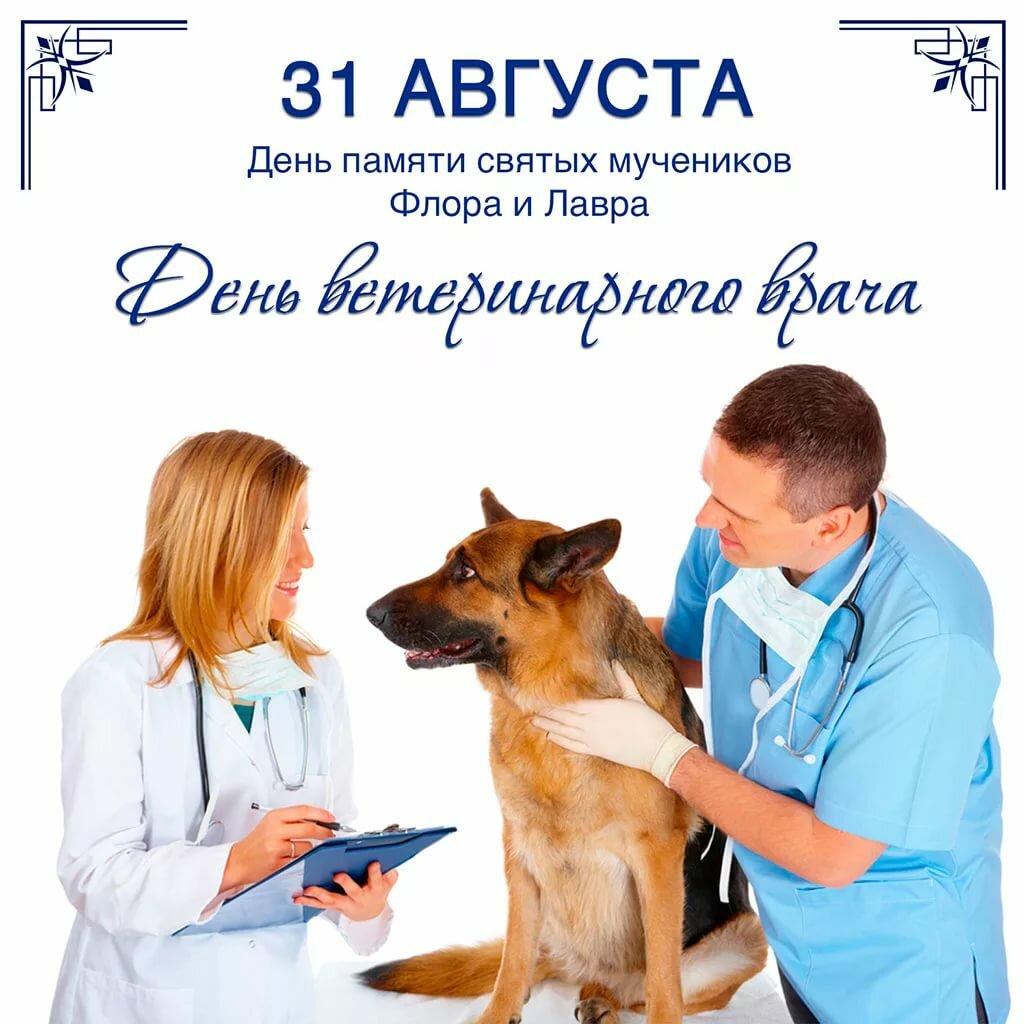 Картинки с днем ветеринарного работника
