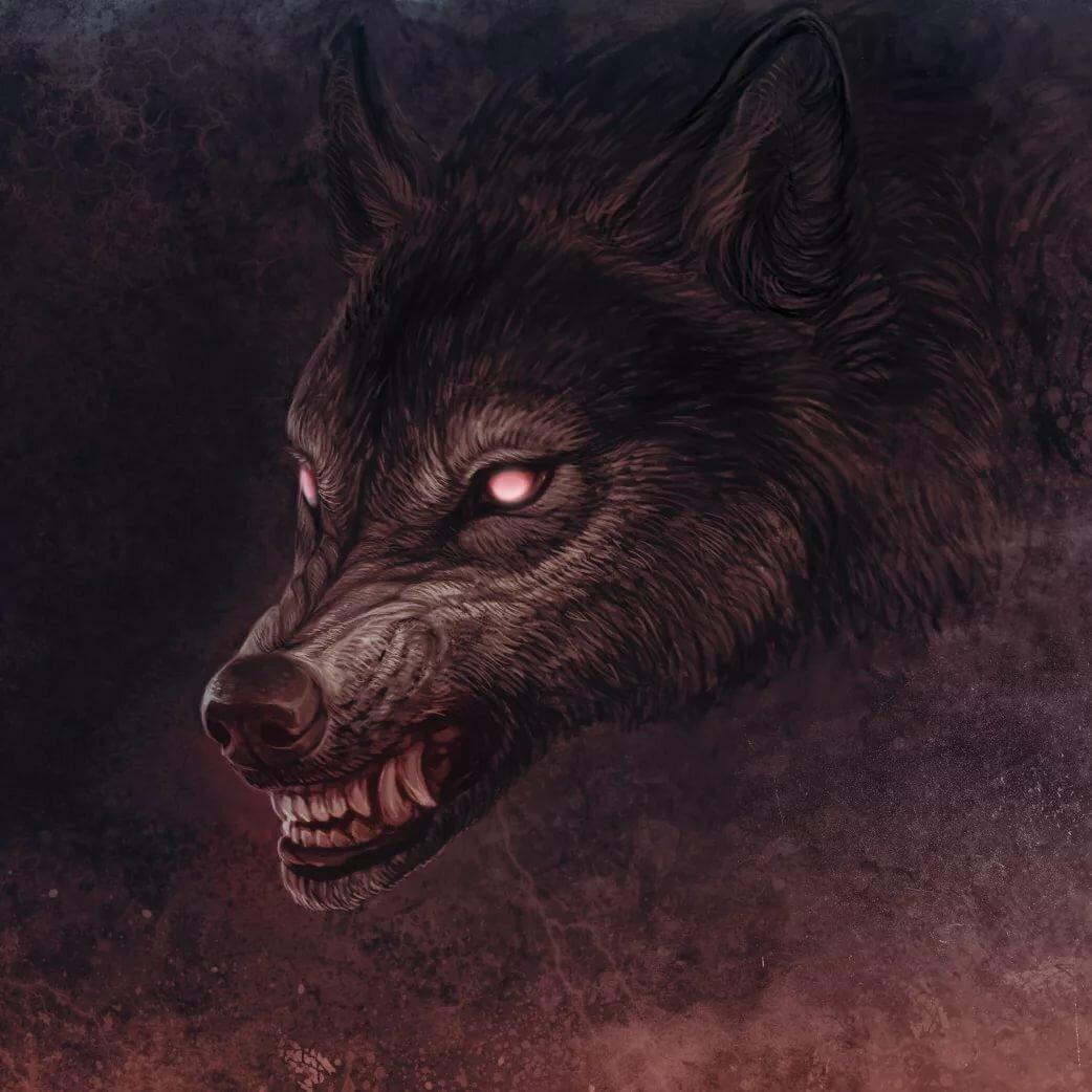 Злые волки красивые картинки
