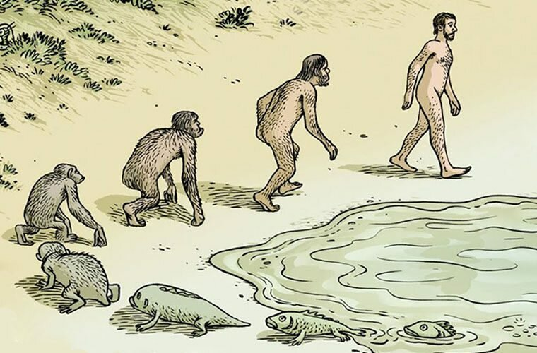 картинка на тему происхождение человека страха сворачиваться комочек