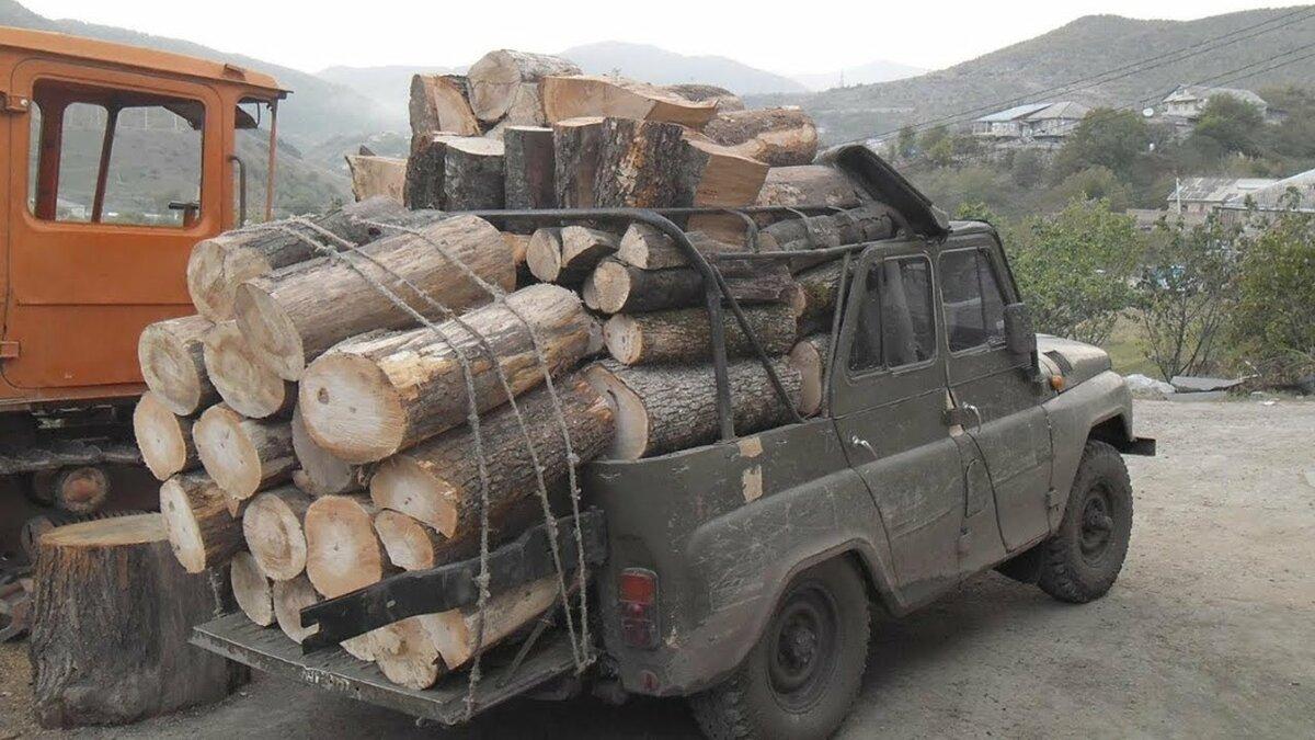Картинки приколы дрова