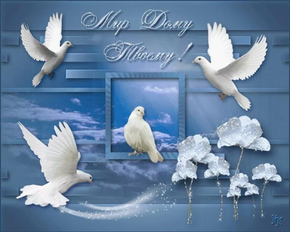 важная открытка с голубями поздравление с днем рождения наших любимых праздников