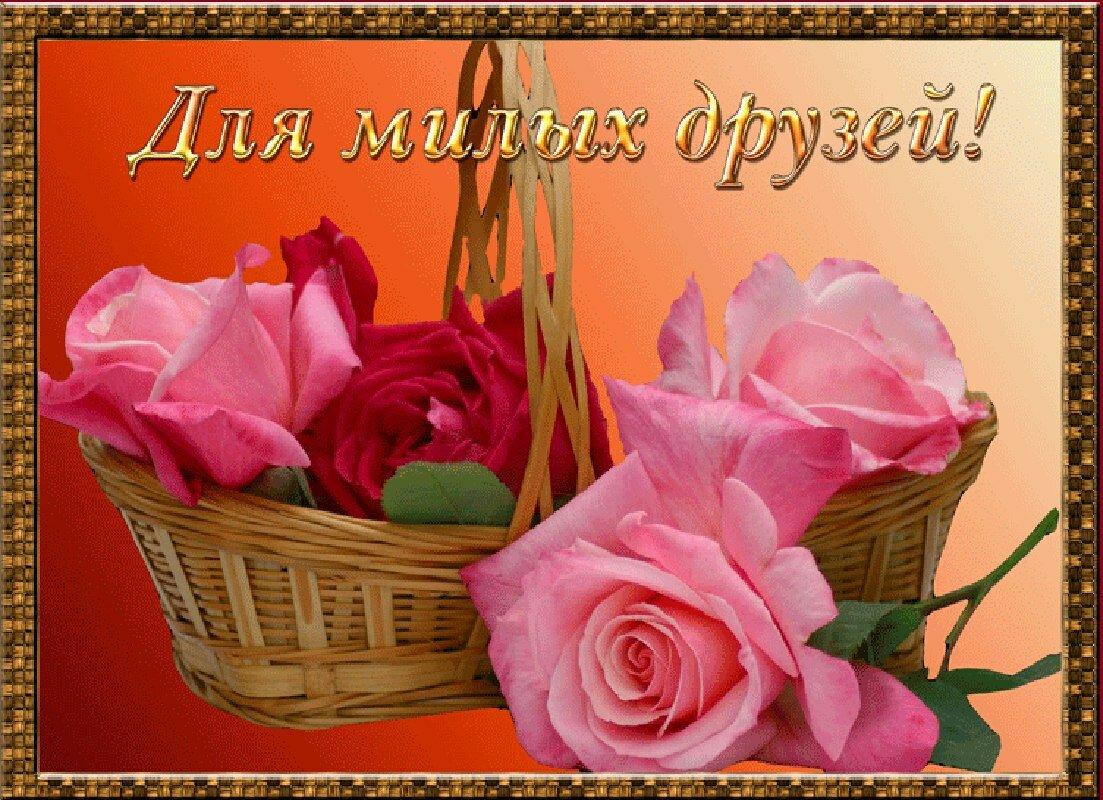 дарья самые красивые открытки друзьям для