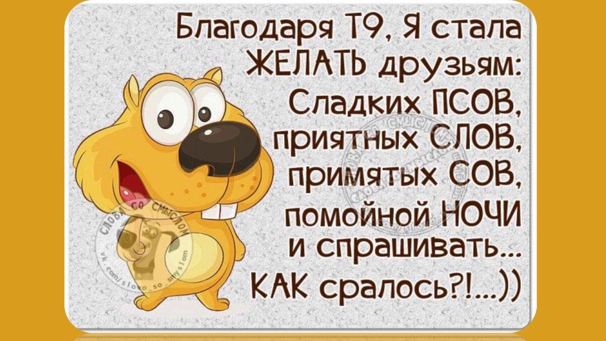 Цитаты прикольные и смешные в картинках, картинки животных надписями
