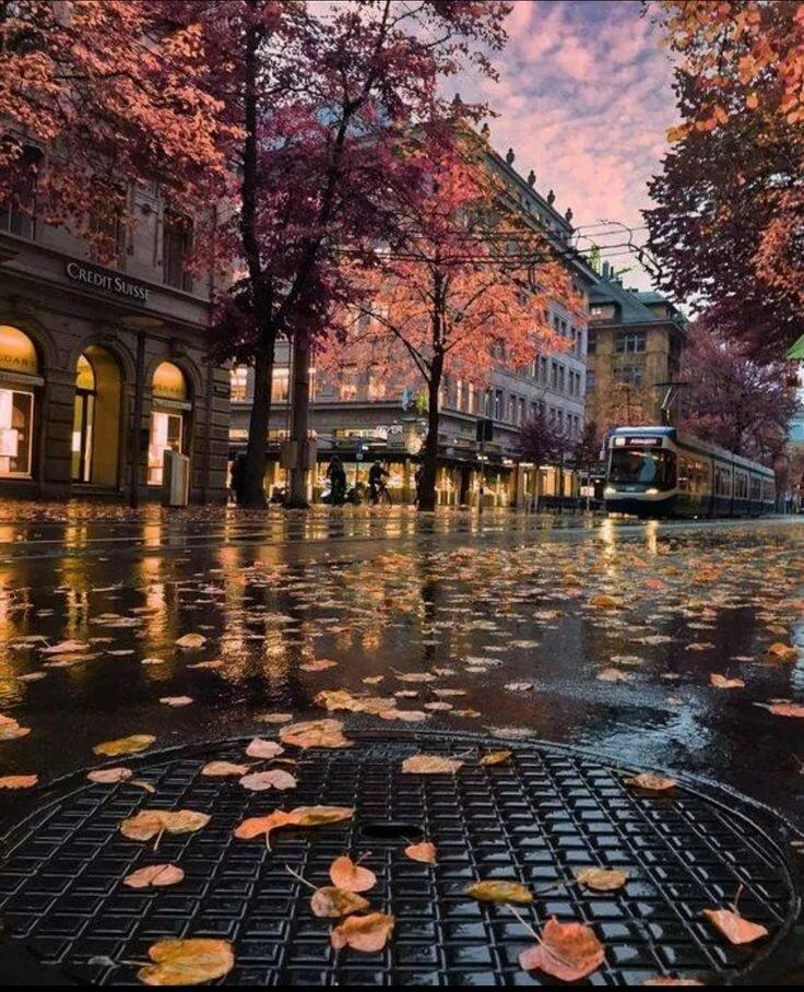 экскурсий сюда осень в городе в картинках скором времени