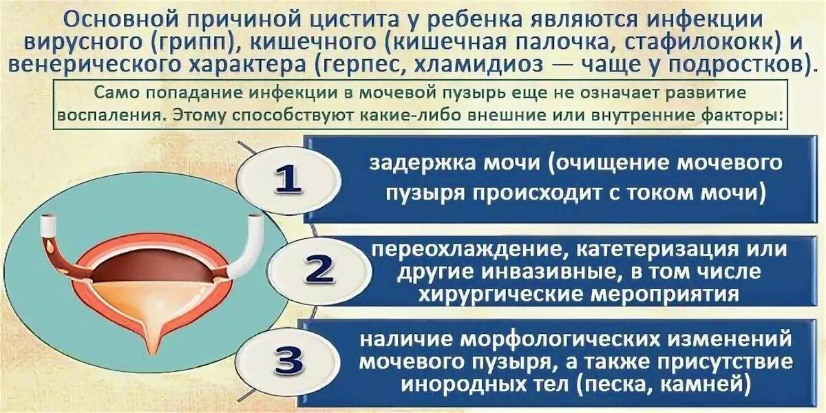 Грудничка у симптомы цистита пти норма у анализ крови беременность