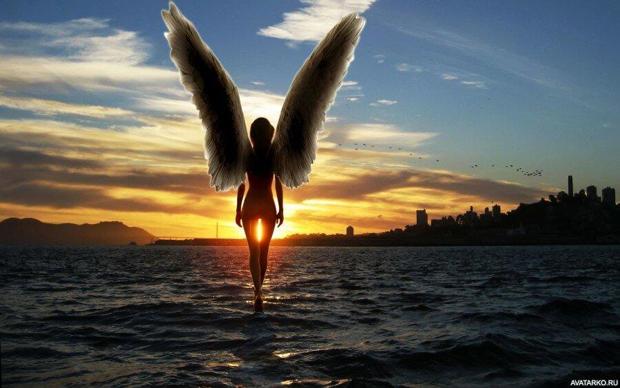 для крылья ночи картинки рукопись
