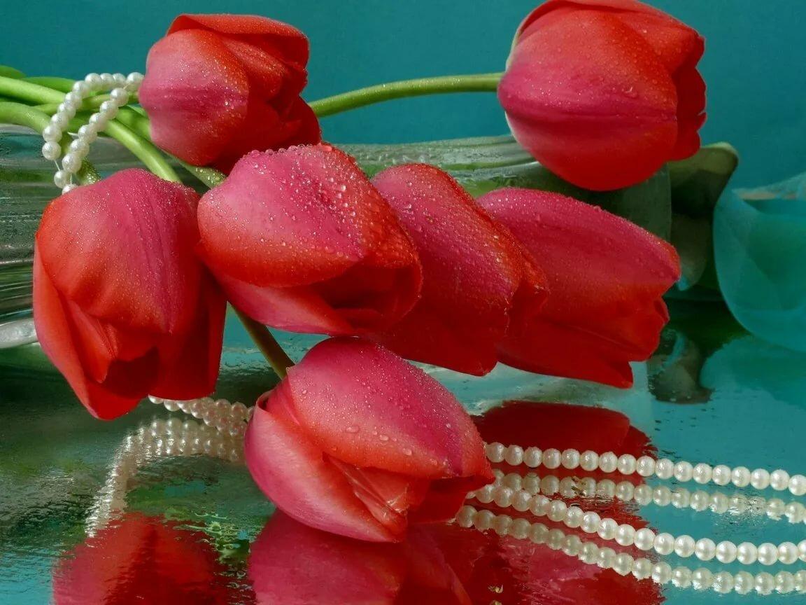 Открытка тюльпаны для тебя