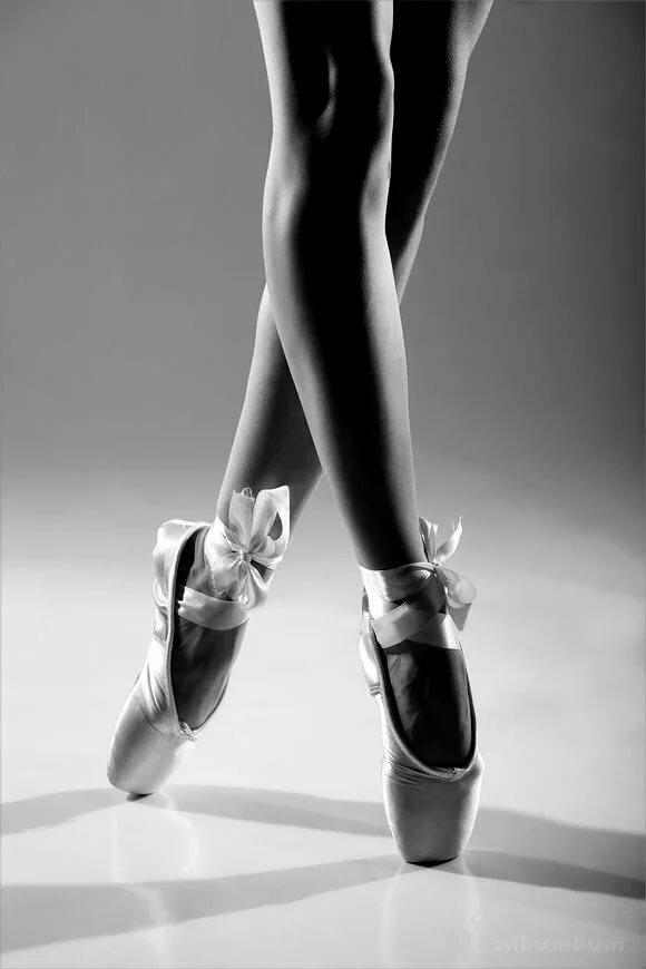 картинка ноги балерины в пуантах недорогую квартирку малосемейку