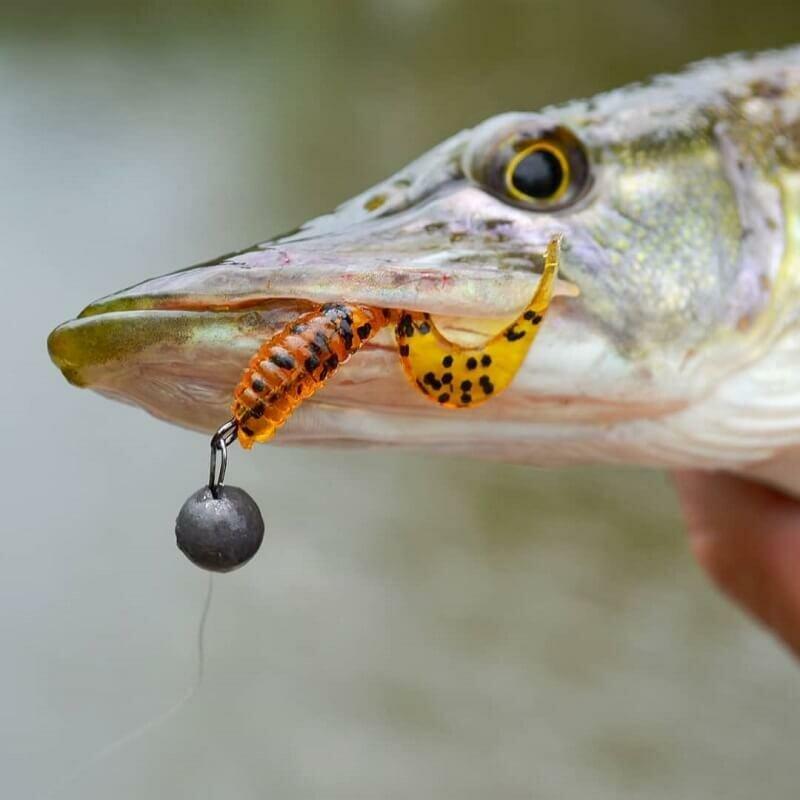 Какие приманки хороши для ловли щуки осенью