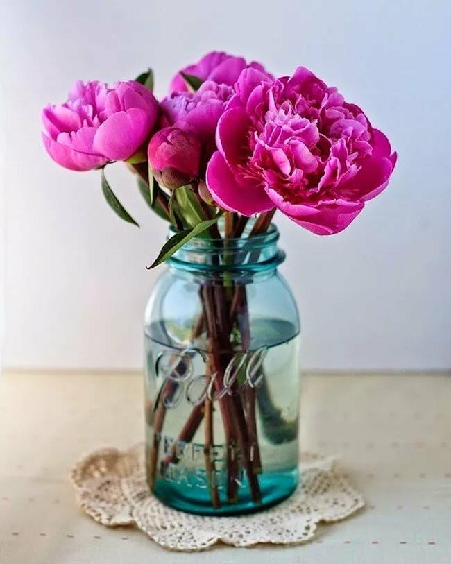 Картинки цветы в банке