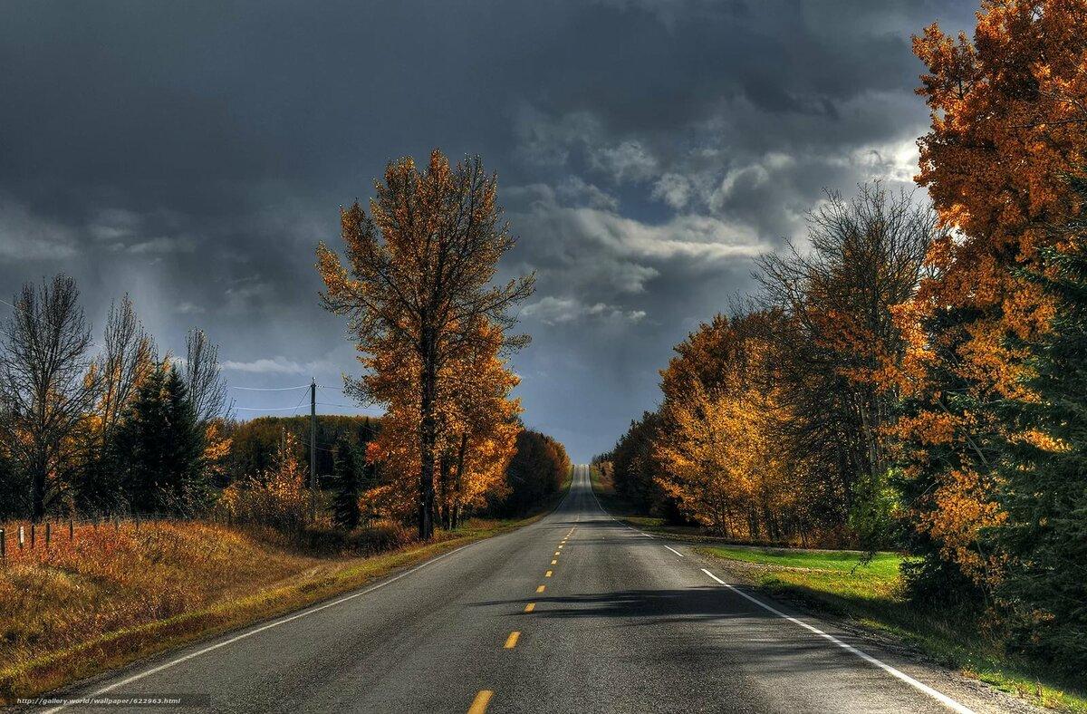 фотографии осень дороги вырвался гопницких подворотен