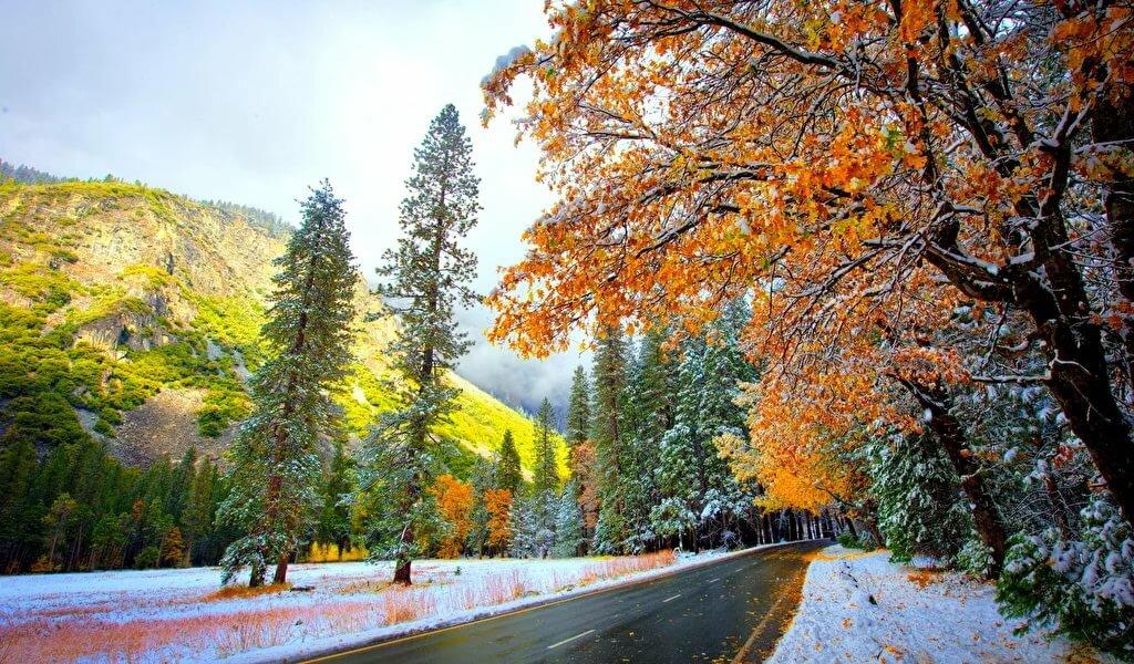 Картинки осень-зима фото